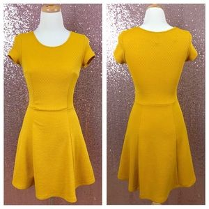 H&M mustard yellow A line dress